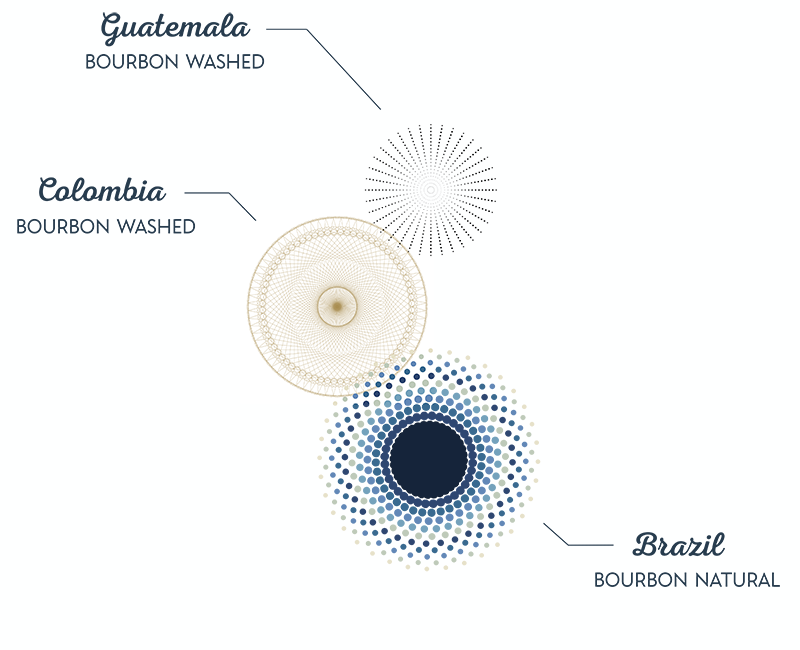 reunion_blend_coffee_infographic_mmc_roasters